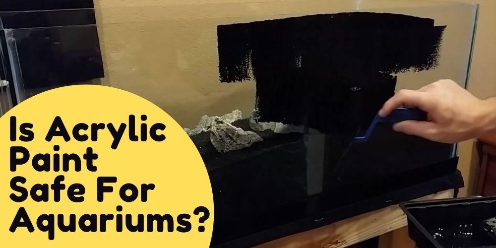 Is Acrylic Paint Safe For Aquarium?