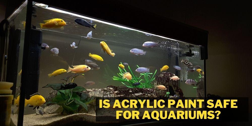 is acrylic paint safe for aquariums