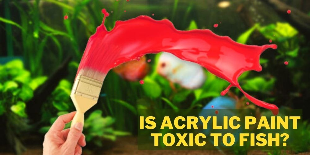 is acrylic paint toxic to fish